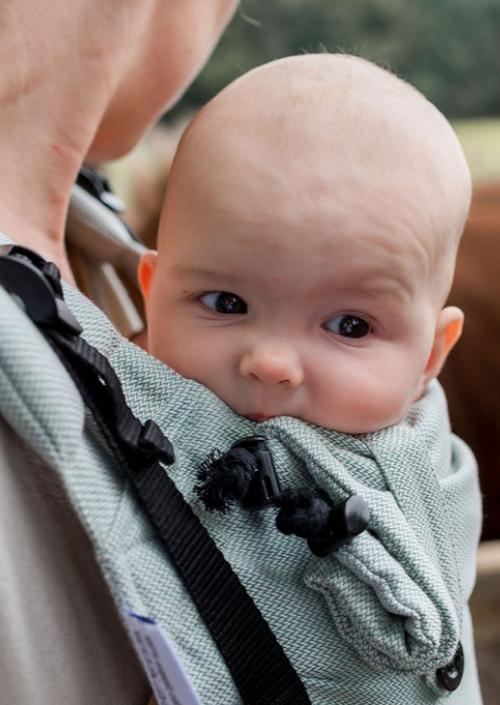 Pure Baby Love Click & Go Toddler Ocean Green