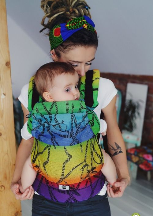 Little Frog Baby Carrier Sweet Tweet