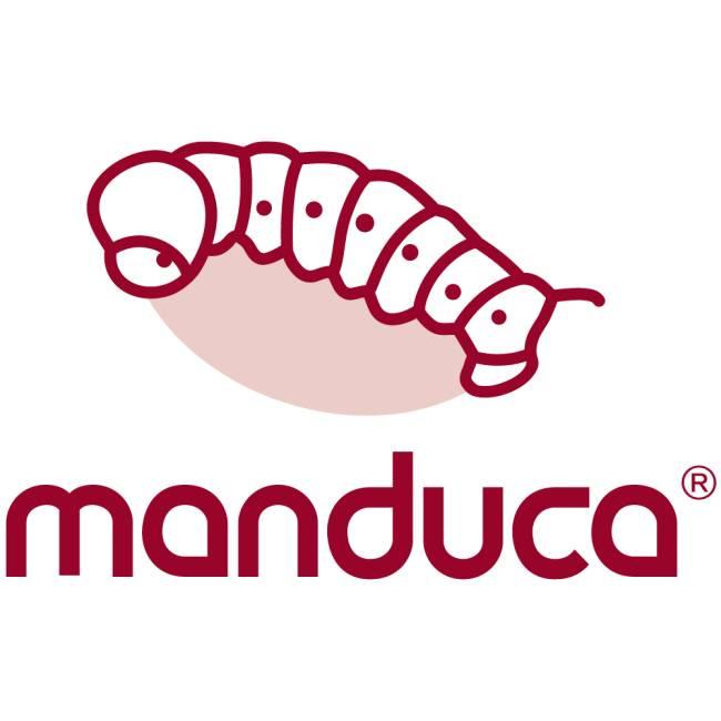 Manduca Logo