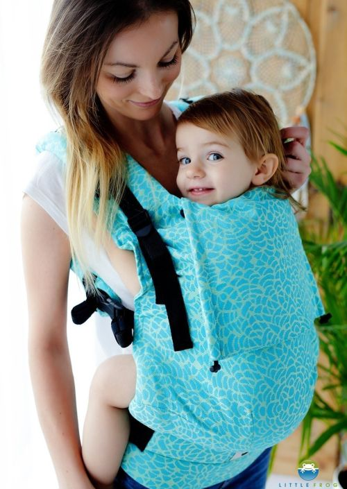 Little Frog Toddler Carrier Flourish