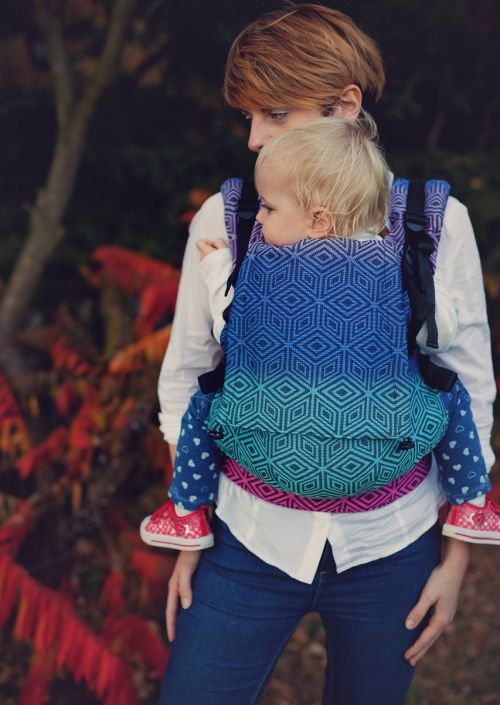 Little Frog Toddler Carrier Dark Aurora Cube